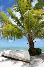 bahamas vacation specials